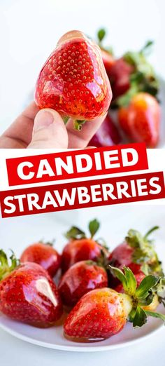 Candied Strawberries - Have you ever had candied strawberries? They're even tastier than chocolate covered strawberries. They have a clear crunchy candy coating and a soft juicy strawberry inside. These strawberries make the perfect Valentine's Day Candy. Candied Strawberries Recipe, Strawberry Cookies, Strawberry Dip, Strawberry Recipes, Fruit Recipes, Candy Recipes, Strawberry Shortcake, Dessert Recipes, Candied Fruit