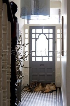 Entrance hall and front door of a Victorian house with a dog lying by the door (Ralph) Victorian Terrace Hallway, Victorian Front Doors, Victorian Porch, Victorian Homes, Hall Tiles, Tiled Hallway, Hallway Flooring, Style At Home, Entrance Hall