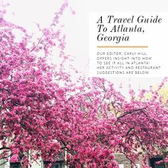 A Travel Guide To Atlanta   Glitter Guide