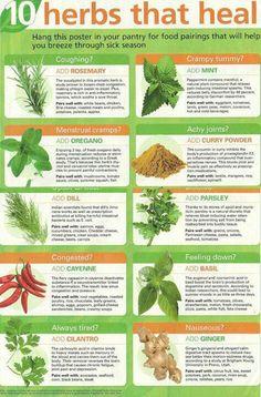 Natural herbs can help your body with almost any illness you may have. #curingsickness #health #facts