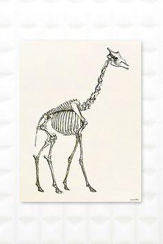 Art mural squelette de girafe