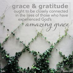 """""""Grace and gratitude ought to be closely connected in the lives of those who have experienced God's amazing grace."""" —David Jeremiah   #InstaEncouragements #instagood #wisdomwords #photooftheday #instadaily #Saturday #grace #gratitude #God #amazinggrace"""