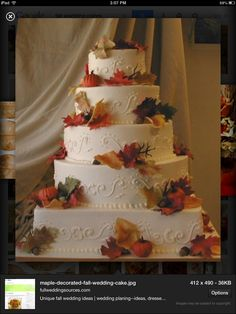 Beautiful fall cake