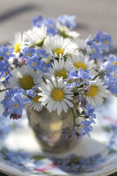 Daisies and Forget-Me-Nots Hint hint***** FAVORITE FLOWERS!!!