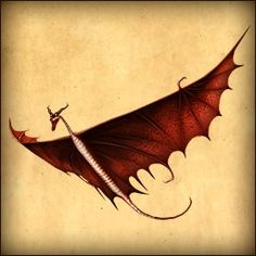 Dragons Rise Of Berk, Httyd Dragons, How To Train Your, How Train Your Dragon, Types Of Dragons, Dragon Rise, Dragon Trainer, Fandoms, Baby Dragon