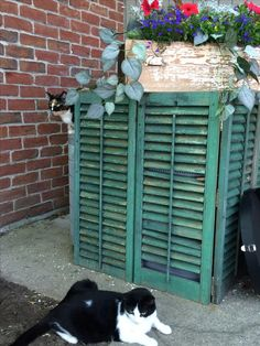 Sistemare i bidoni della spazzatura in giardino! 20 idee da vedere... Sistemare i bidoni della spazzatura in giardino. I secchi della spazzatura non sono il massimo della bellezza in giardino! Ecco perché abbiamo selezionato per Voi oggi 20 idee per...