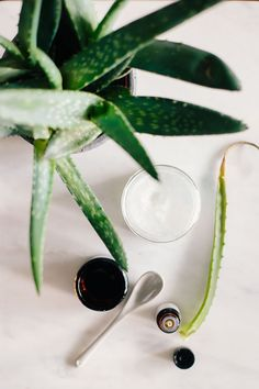 DIY Coconut Oil Shaving Cream   9 Tips for the Perfect Shave