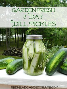 Garden Fresh Easy Dill Pickle Recipe