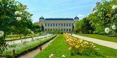 #Jardin #des #Plantes in #Paris © Gudrun Krinzinger
