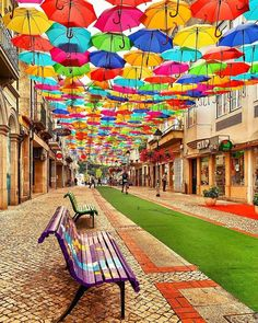 Colorful street ☔️ Do you wanna see your photos promoted here? Check the link in our bio for instructions: Agueda, Portugal. Photo by Umbrella Street, Wanderlust Hotel, Nature Photography, Travel Photography, Balloons Photography, Ballet Photography, Adventure Photography, Colorful Umbrellas, Destination Voyage