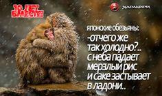 попытка описать холода стихами)