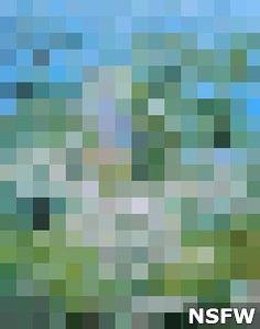 Apuseni - Floare Muntean