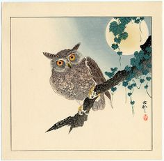 early1930's - Shōson, Ohara -Scops Owl on a Branch, Full Moon Above