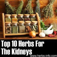 #kidneys