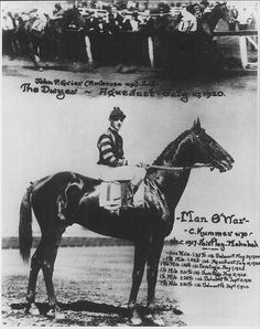 One of the greatest Race Horses of all time,...Man O' War.  Said to be one of the most influential Thoroughbred sires of all time.  He never raced in the Kentucky Derby but took the 1920 Preakness and Belmont Stakes.  He also defeated Triple Crown Winner and Canadian Champion Sir Barton in a match race.