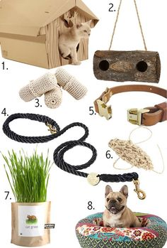 2010 gift guides: for the animal lover | Design*Sponge