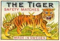 Just for the colours and the tiger's giant head - The Tiger matches out of Sweden. Love it.