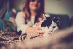 Looking After Your Senior Pets: 14 Points For You to Consider