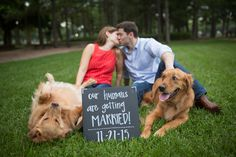 Cute save the date idea with dogs - Houston wedding photography - MD Turner Photography
