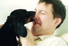 @Arion_ES Por qué tu #perro te lame la cara? Es un beso? Un saludo? Descúbrelo en www.elblogdearion.com