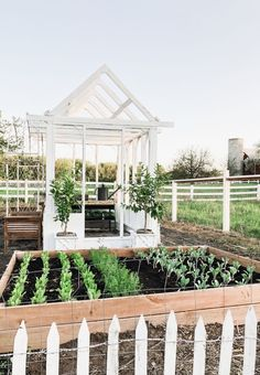 I'm so excited to share this with you today!! A few weeks ago Jose & I were garden planning & I mentioned that I wanted a garden shed/greenhouse structure in our garden. Not necessarily a real greenhouse or even a garden shed with a roof, but more of a structure that we can use, but …
