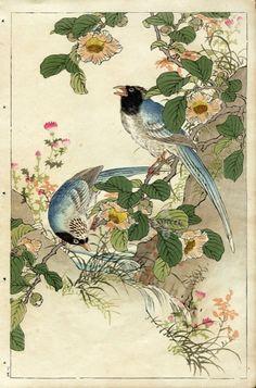 Потрясающие японские гравюры 1880-х годов.