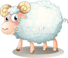 Search for Stock Photos of Sheep on Thinkstock