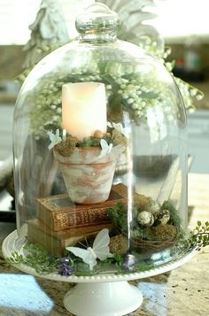 Life in Pictures.: Make an Easy and Inexpensive Easter/Spring Centerpiece Cloche Decor, The Bell Jar, Bell Jars, Deco Floral, Country Farmhouse Decor, Bedroom Country, Farmhouse Lighting, Farmhouse Table, Country Chic