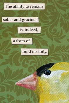 Mincing Mockingbird magnet: The ability to remain sober and gracious is, indeed, a mild form of insanity Bird Quotes, Me Quotes, Funny Quotes, Memes, Funny Birds, Weird Birds, Funny Animals, Sober Life, Youre My Person