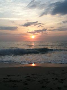 I love Vero beach, Florida. Vero Beach Florida, Florida Sunshine, Sunshine State, Seaside Village, Seaside Towns, Landscaping Near Me, Contemporary Landscape, Sea Shells, Beautiful Places