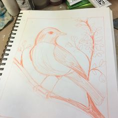 Take two on the American #Robin. Marathon #painting session is underway!  #art #birds #studiolife
