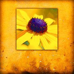 'Flora im Quadrat' von Dirk h. Wendt bei artflakes.com als Poster oder Kunstdruck $18.03