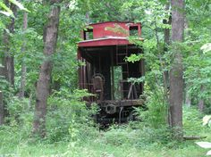 Trains ran through here until 1942, now here it is in its beauty, surrounded with trees & vines, forgotten.