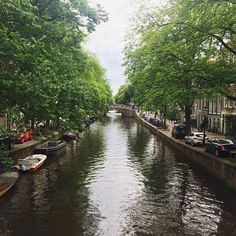 Biking across the canals in Amsterdam never gets old with these views! #OurSweetAdventures #TravelingWithASweetTooth . . . #Amsterdam #Netherlands #Canal #Beauty #Water #Wanderlust #Wanderer #WanderLove  #TravelingCouples #CouplesTravel #igtravel #TravelGram #InstaTravel #Travel #Traveler #TravelBlog #TravelBlogger #Blogger #PassportReady #BeautifulView