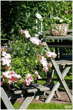 Bag End: Juhannusresepti Cute Little Things, Garden Inspiration, Table Decorations, Nature, Vintage, Furniture, Bag, Home Decor, Gardens