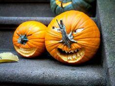 schöne-Halloween-Kür