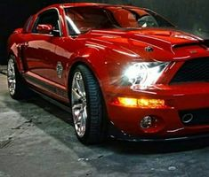 2 more bucks I could of had a red one. Mustangs, Ford Mustang, Muscle Cars, Cool Cars, Bmw, Trucks, Vehicles, Cars, Ford Mustangs