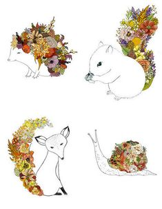 Animal and flower line drawings.