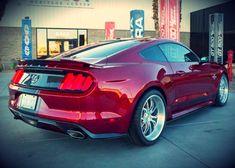 Shelby Super Snake – Novo Carro baseado no Mustang GT • Carro Bonito