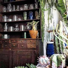 Peeking through the japanese #cacti at #lasoufflerie #handblown designs Thank you to #Conduit store in #Japan for  & stocking our #glass Tag us in your #tableware #shelfie & we'll repost our #loves #花瓶 #花 #おうち #ガラス #手作り