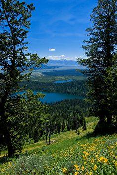 Majestic View** Grand Tetons Wyoming