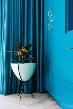 Contemporary closet features blue lacquered cabinets adorned with brass pulls next to a modern tripod planter atop herringbone floors placed in front of windows dressed in blue silk curtains.