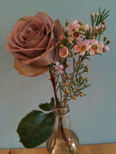 'Amnesia' Rose and Wax Flower White Wax Flower, Wax Flowers, Wedding Flowers, Amnesia Rose, Glass Vase, Cushion, Wedding Ideas, Home Decor, Cake