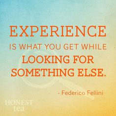 Experience is what you get while looking for something else.