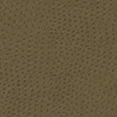 Sierra - Crepe Myrtle : LDI Corporation :  Simply Powerful : www.paletteapp.com