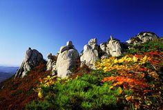 Found on Bing from korea. Cool Places To Visit, Places To Go, Big Mountain, Seoul Korea, Fall Pictures, Monument Valley, The Good Place, Travel Destinations, Beautiful Places