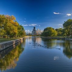 If you want to take a rest, you can relax in parks that look like THIS: | 23 Reasons Chicago Is The Definition Of Amazing