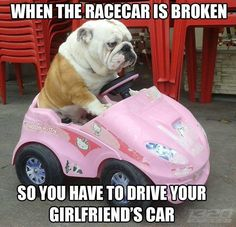Car memes #firstworldproblems