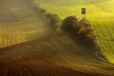 """In the spring fields of South Moravia - <a href=""""https://www.instagram.com/danielrerichacz"""">INSTAGRAM</a> 