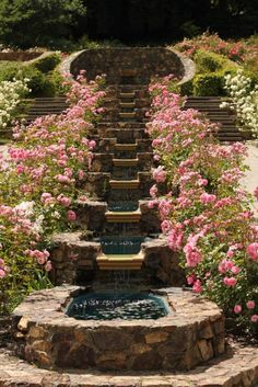 waterfall between the roses